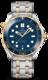 Omega Seamaster Diver 300M 210.20.42.20.03.001 - 1/2